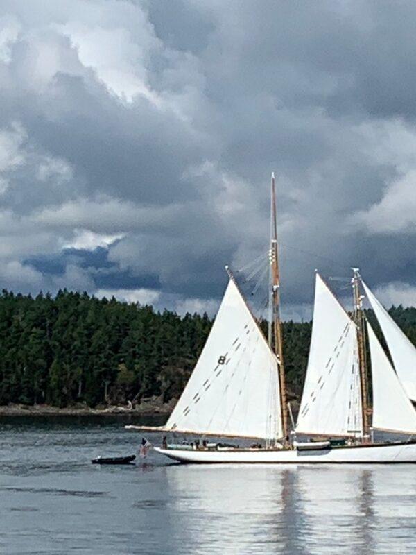 Sailboats on San Juan Island