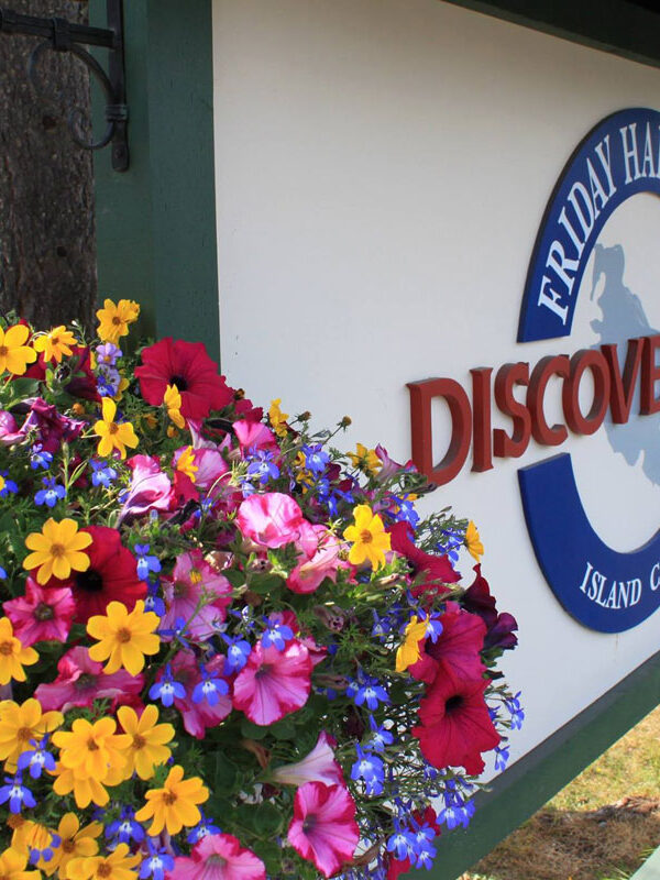 Discovery Inn Sign